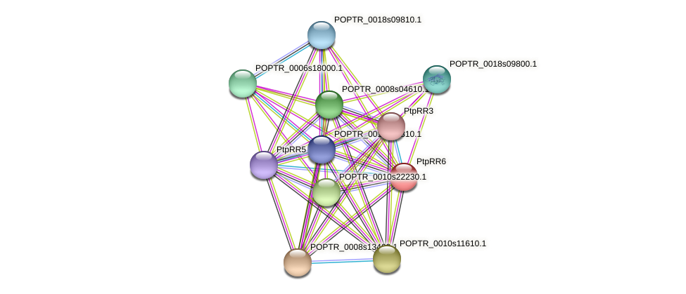 POPTR_0002s18050.1 protein (Populus trichocarpa) - STRING interaction network