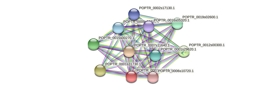 POPTR_0002s18200.1 protein (Populus trichocarpa) - STRING interaction network