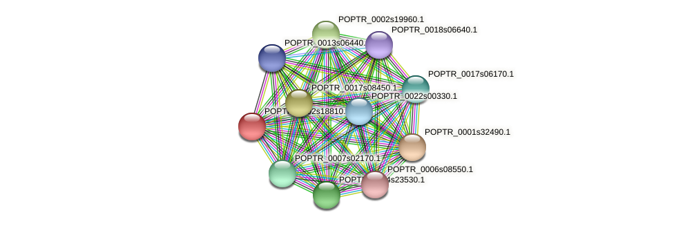 POPTR_0002s18810.1 protein (Populus trichocarpa) - STRING interaction network