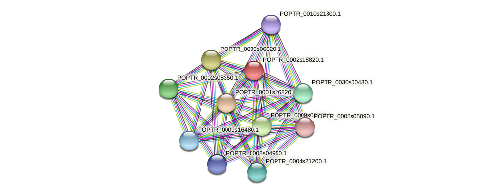 POPTR_0002s18820.1 protein (Populus trichocarpa) - STRING interaction network