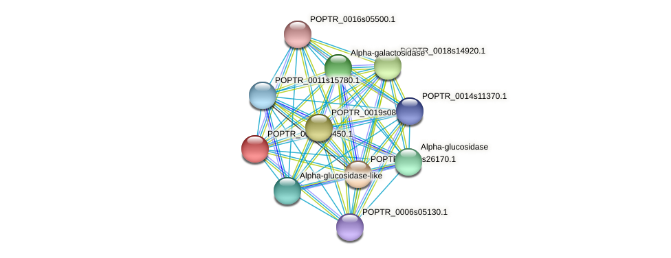 POPTR_0002s19450.1 protein (Populus trichocarpa) - STRING interaction network