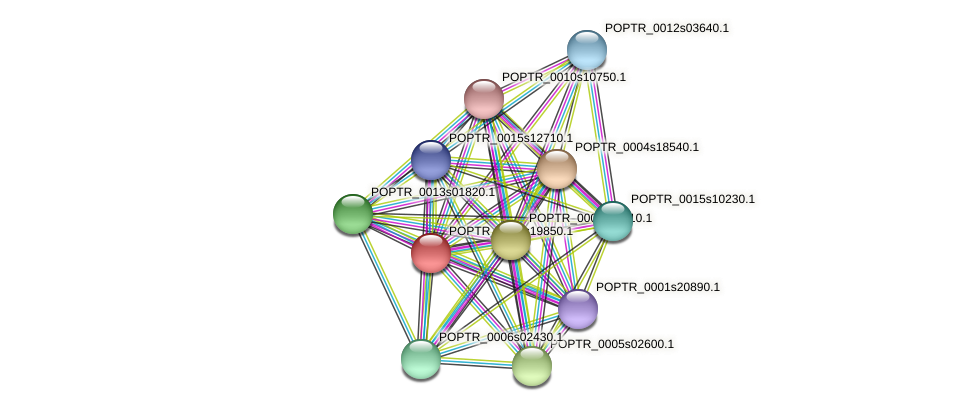 POPTR_0002s19850.1 protein (Populus trichocarpa) - STRING interaction network