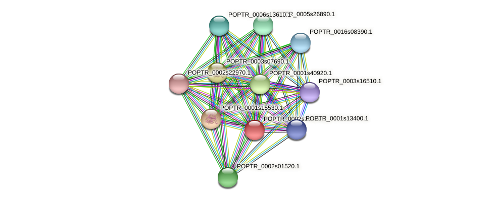 POPTR_0002s20420.1 protein (Populus trichocarpa) - STRING interaction network