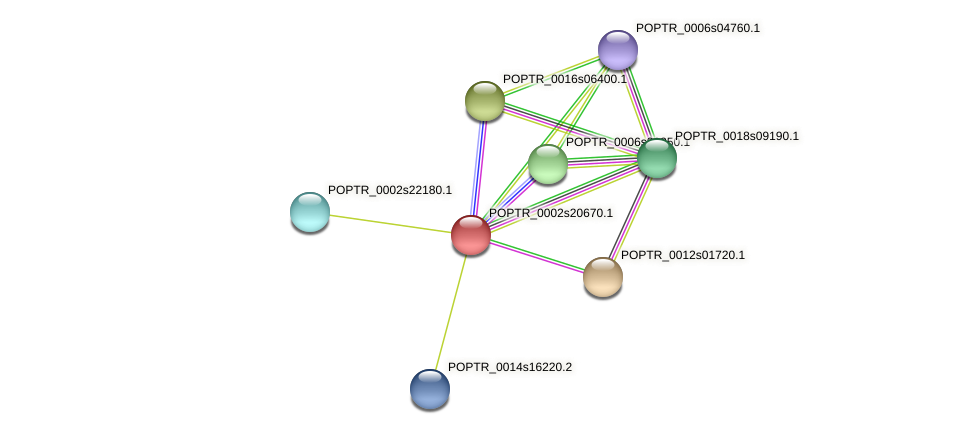 POPTR_0002s20670.1 protein (Populus trichocarpa) - STRING interaction network