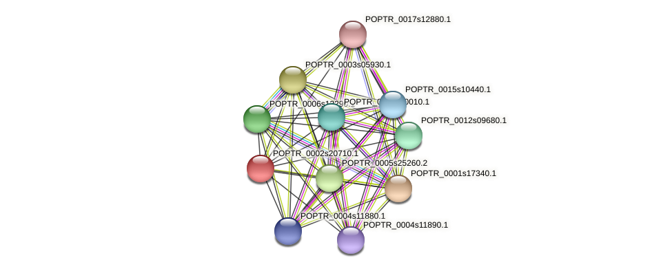 POPTR_0002s20710.1 protein (Populus trichocarpa) - STRING interaction network