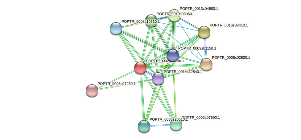 POPTR_0002s20730.1 protein (Populus trichocarpa) - STRING interaction network