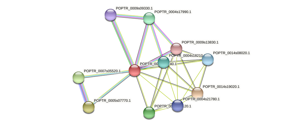 POPTR_0002s20740.1 protein (Populus trichocarpa) - STRING interaction network
