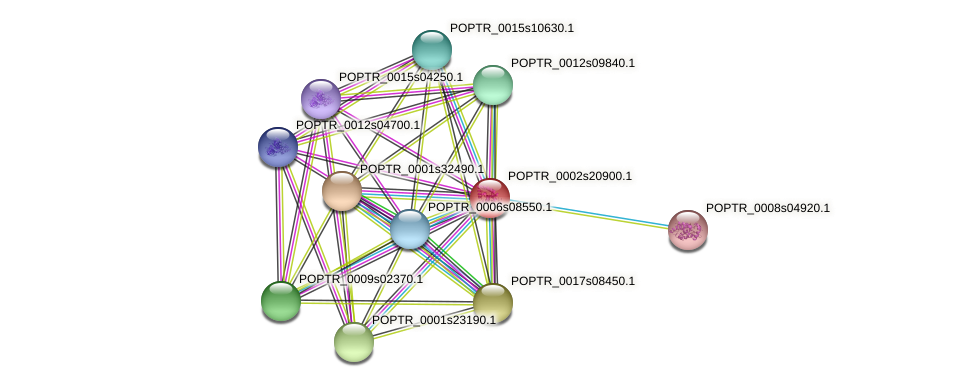 POPTR_0002s20900.1 protein (Populus trichocarpa) - STRING interaction network