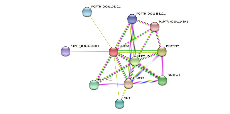 POPTR_0002s20980.1 protein (Populus trichocarpa) - STRING interaction network