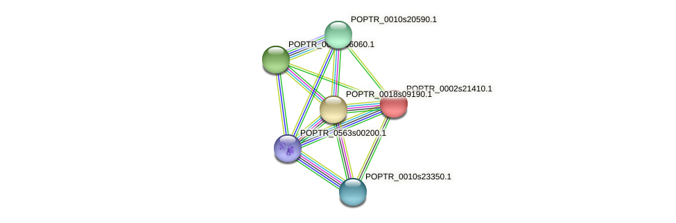 POPTR_0002s21410.1 protein (Populus trichocarpa) - STRING interaction network