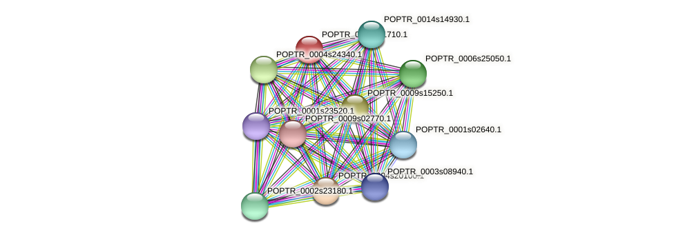 POPTR_0002s21710.1 protein (Populus trichocarpa) - STRING interaction network