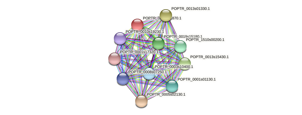 POPTR_0002s21870.1 protein (Populus trichocarpa) - STRING interaction network