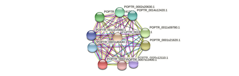 POPTR_0002s22490.1 protein (Populus trichocarpa) - STRING interaction network