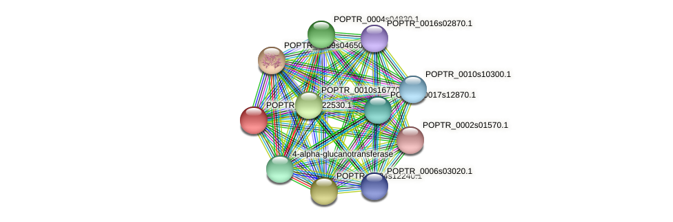 POPTR_0002s22530.1 protein (Populus trichocarpa) - STRING interaction network