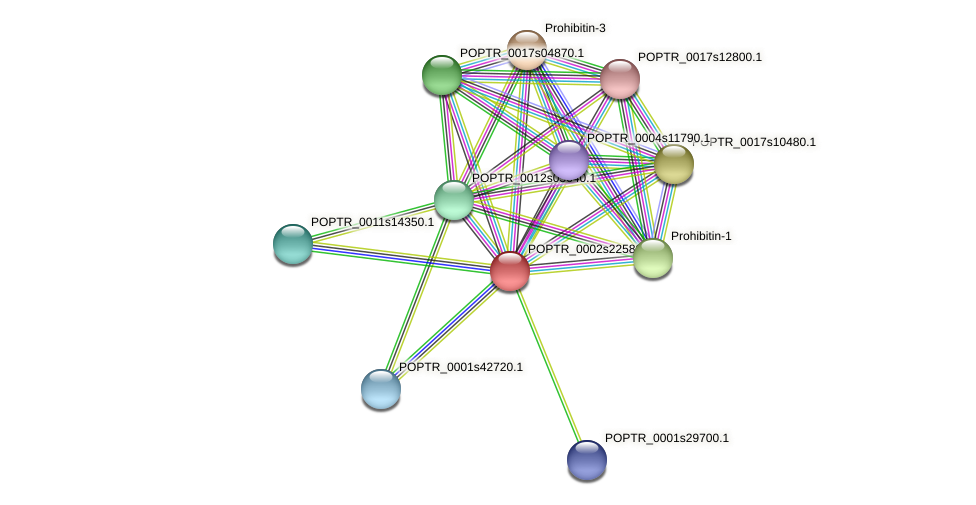 POPTR_0002s22580.1 protein (Populus trichocarpa) - STRING interaction network