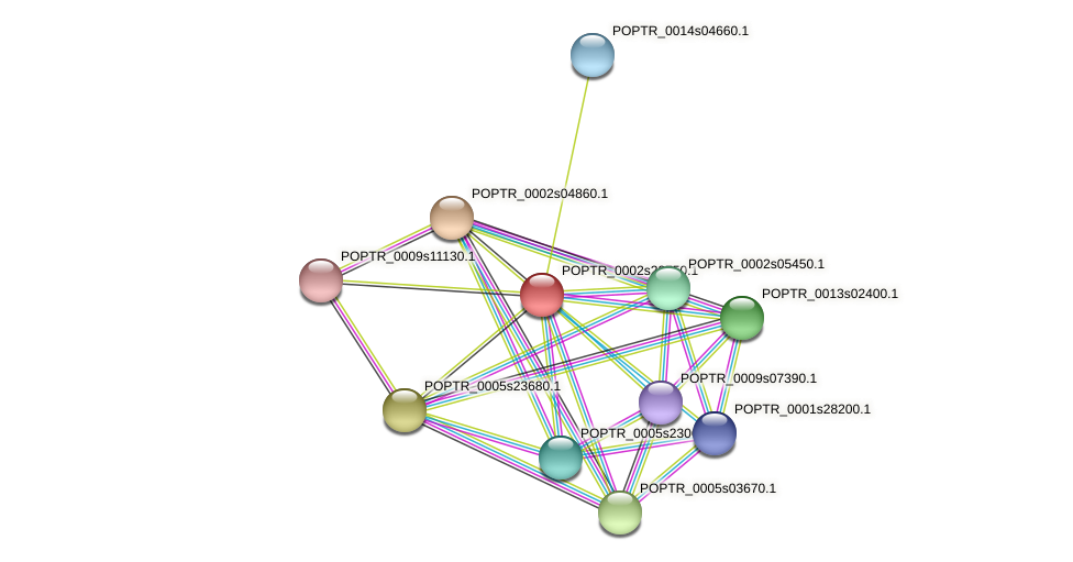 POPTR_0002s22750.1 protein (Populus trichocarpa) - STRING interaction network