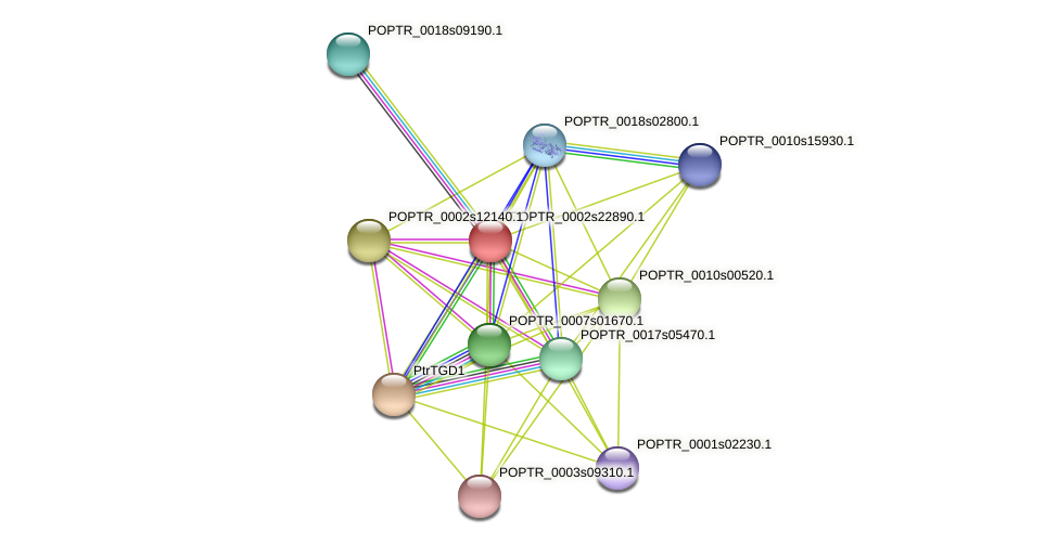 POPTR_0002s22890.1 protein (Populus trichocarpa) - STRING interaction network