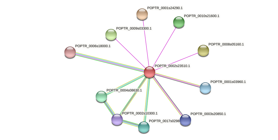 POPTR_0002s23510.1 protein (Populus trichocarpa) - STRING interaction network