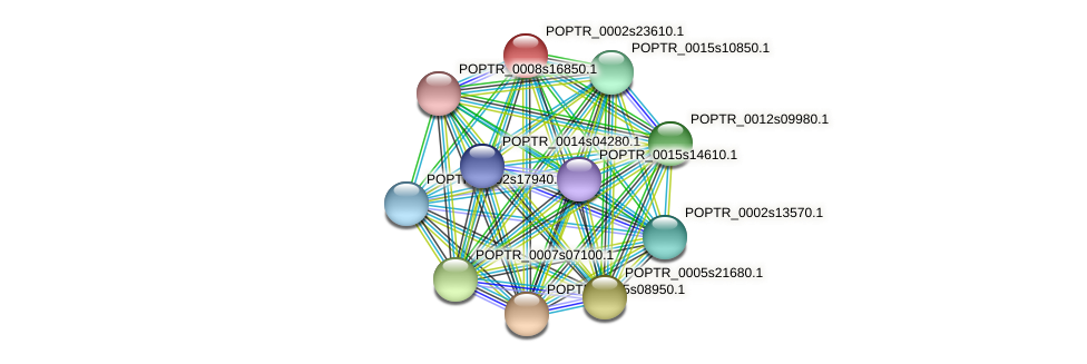 POPTR_0002s23610.1 protein (Populus trichocarpa) - STRING interaction network