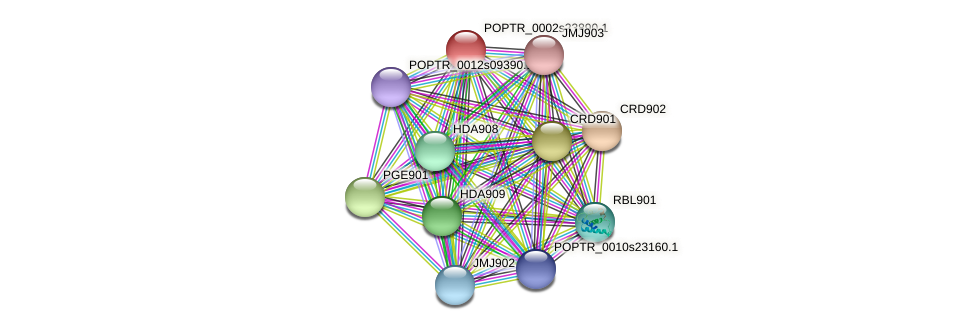 POPTR_0002s23890.1 protein (Populus trichocarpa) - STRING interaction network