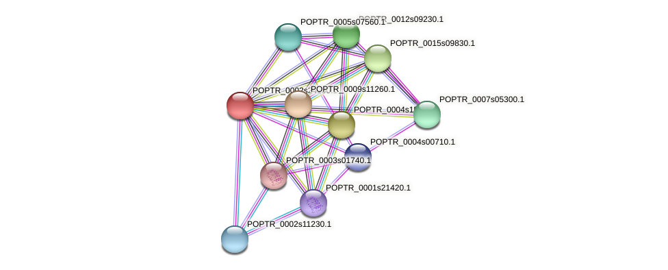 POPTR_0002s24100.1 protein (Populus trichocarpa) - STRING interaction network