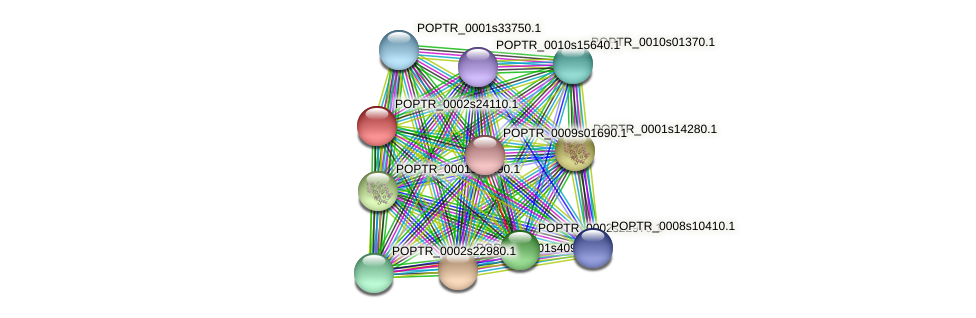 POPTR_0002s24110.1 protein (Populus trichocarpa) - STRING interaction network