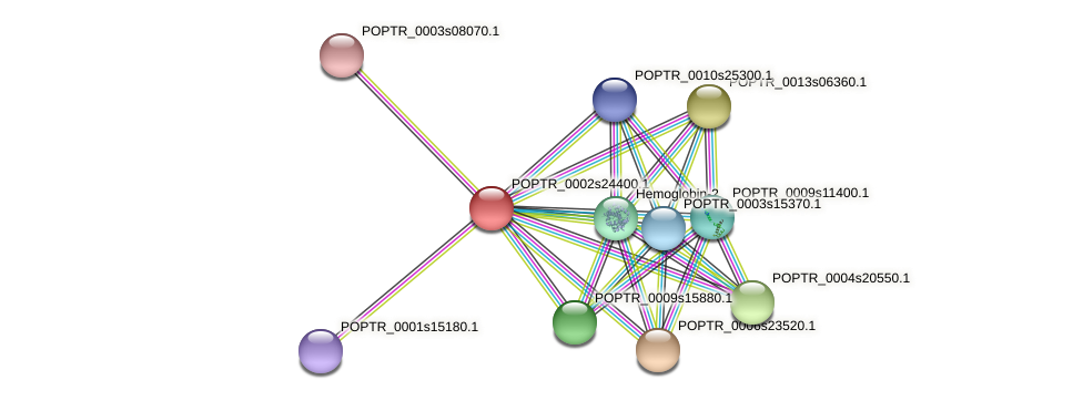 POPTR_0002s24400.1 protein (Populus trichocarpa) - STRING interaction network