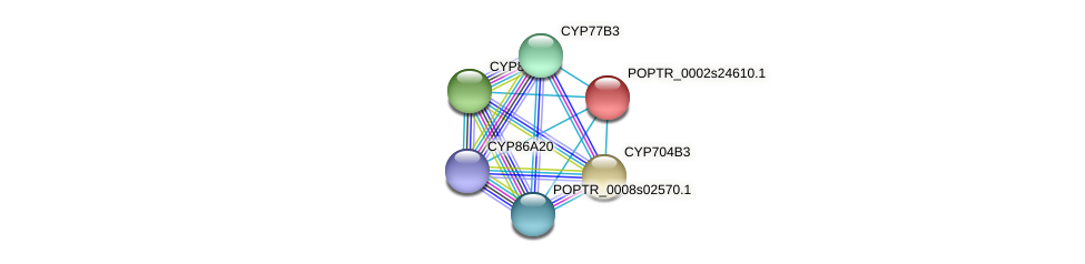 POPTR_0002s24610.1 protein (Populus trichocarpa) - STRING interaction network