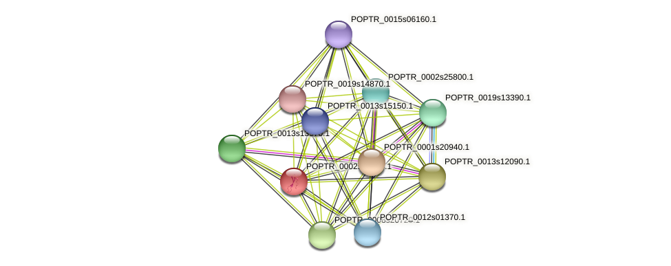 POPTR_0002s25140.1 protein (Populus trichocarpa) - STRING interaction network