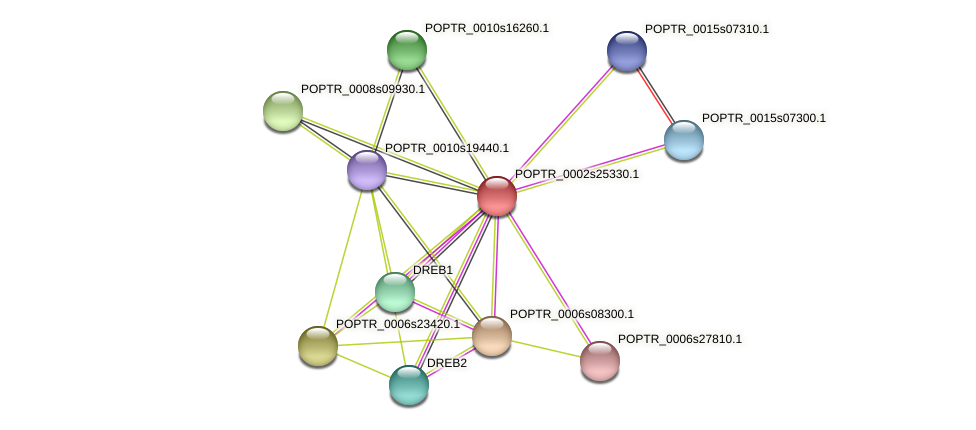 POPTR_0002s25330.1 protein (Populus trichocarpa) - STRING interaction network
