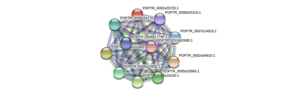 POPTR_0002s25720.1 protein (Populus trichocarpa) - STRING interaction network
