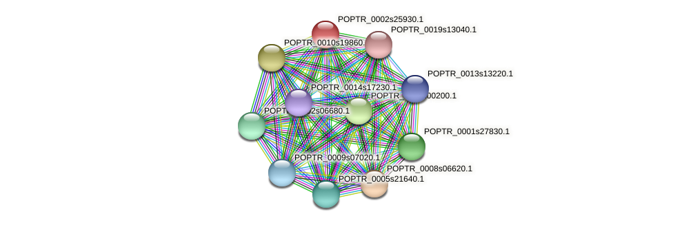 POPTR_0002s25930.1 protein (Populus trichocarpa) - STRING interaction network