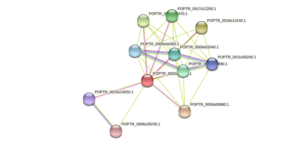 POPTR_0002s25960.1 protein (Populus trichocarpa) - STRING interaction network
