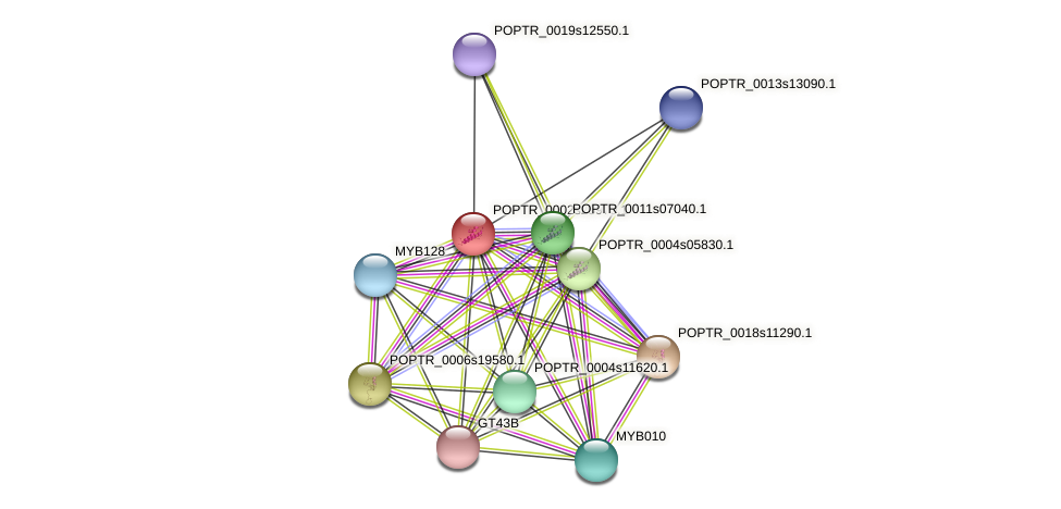 POPTR_0002s25970.1 protein (Populus trichocarpa) - STRING interaction network