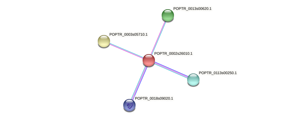 POPTR_0002s26010.1 protein (Populus trichocarpa) - STRING interaction network
