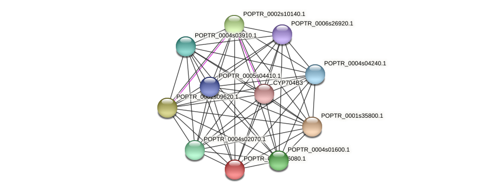 POPTR_0002s26080.1 protein (Populus trichocarpa) - STRING interaction network