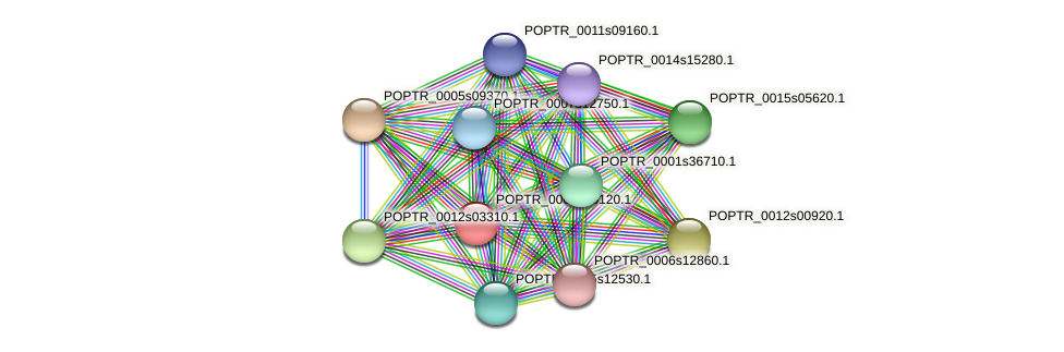 POPTR_0002s26120.1 protein (Populus trichocarpa) - STRING interaction network