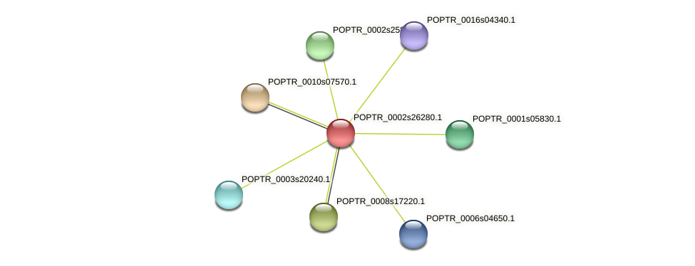 POPTR_0002s26280.1 protein (Populus trichocarpa) - STRING interaction network