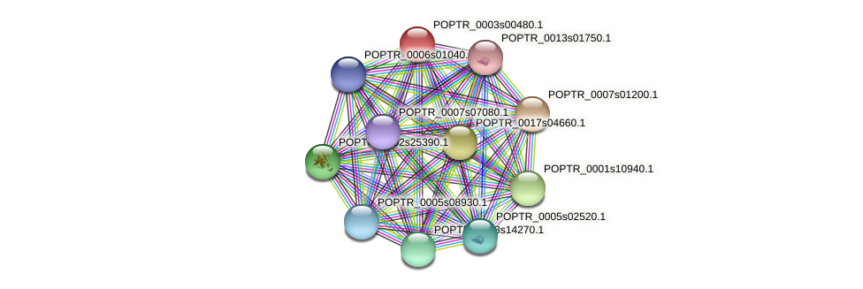 POPTR_0003s00480.1 protein (Populus trichocarpa) - STRING interaction network