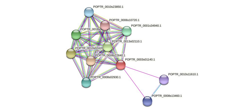 POPTR_0003s01140.1 protein (Populus trichocarpa) - STRING interaction network