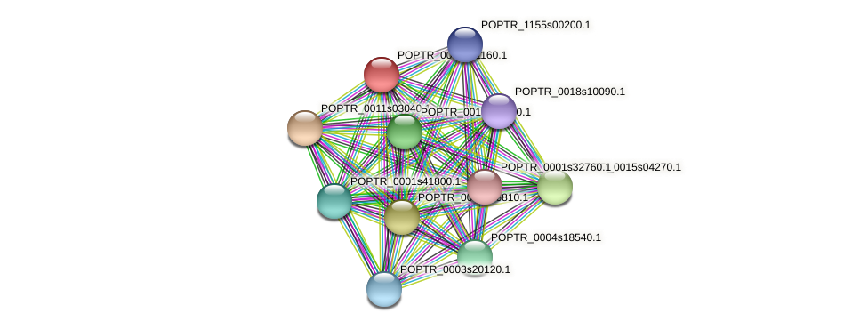 POPTR_0003s01160.1 protein (Populus trichocarpa) - STRING interaction network