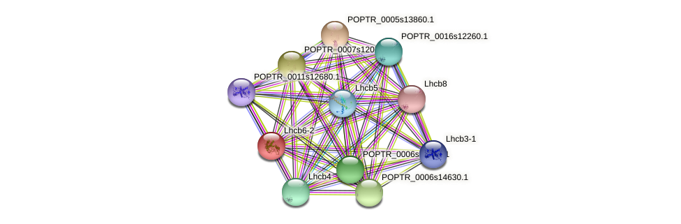 POPTR_0003s01450.1 protein (Populus trichocarpa) - STRING interaction network