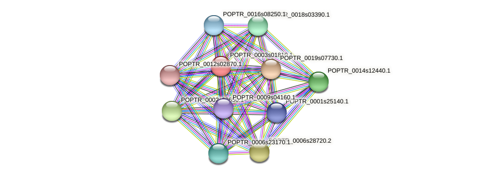 POPTR_0003s01810.1 protein (Populus trichocarpa) - STRING interaction network