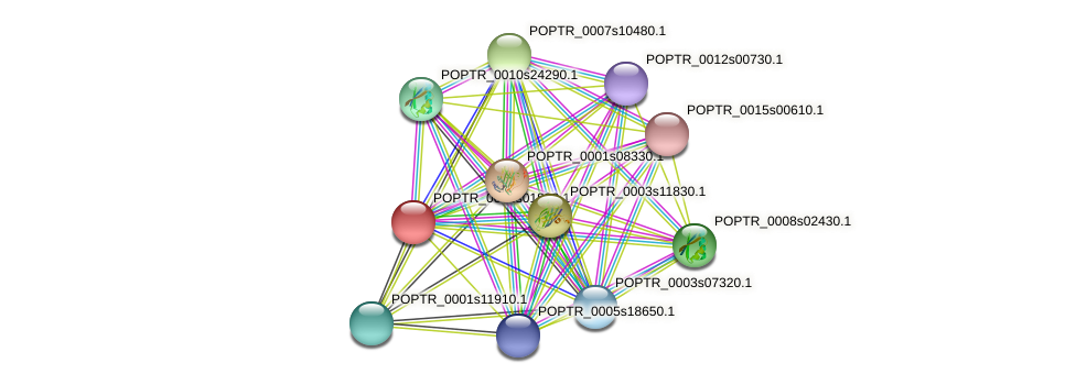 POPTR_0003s01830.1 protein (Populus trichocarpa) - STRING interaction network