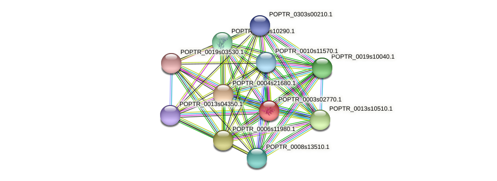 POPTR_0003s02770.1 protein (Populus trichocarpa) - STRING interaction network