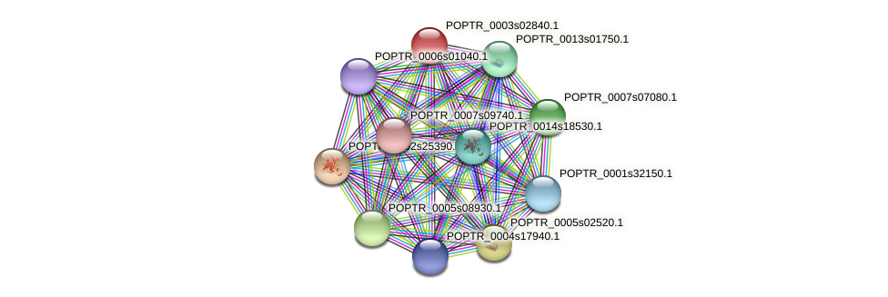 POPTR_0003s02840.1 protein (Populus trichocarpa) - STRING interaction network