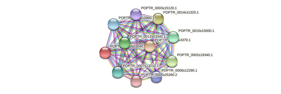 POPTR_0003s03040.1 protein (Populus trichocarpa) - STRING interaction network