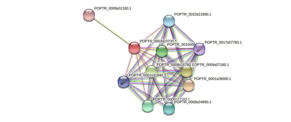POPTR_0003s03230.1 protein (Populus trichocarpa) - STRING interaction network