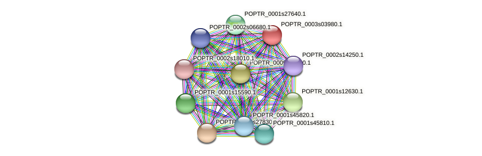 POPTR_0003s03980.1 protein (Populus trichocarpa) - STRING interaction network