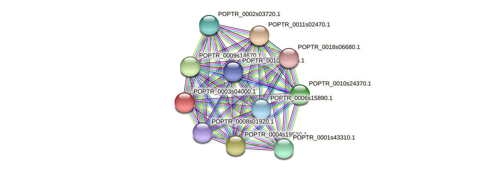 POPTR_0003s04000.1 protein (Populus trichocarpa) - STRING interaction network